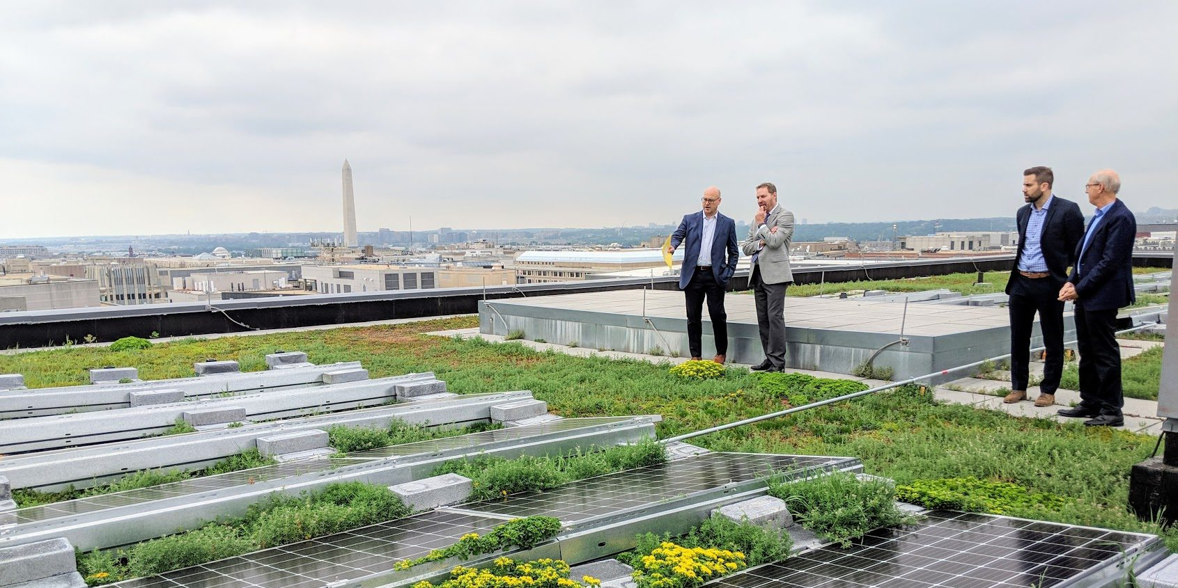 Four people are standing in groups of two on a rooftop covered in greenery and solar panels. The rooftop overlooks a city and a tower is in the back. The sky is overcast.