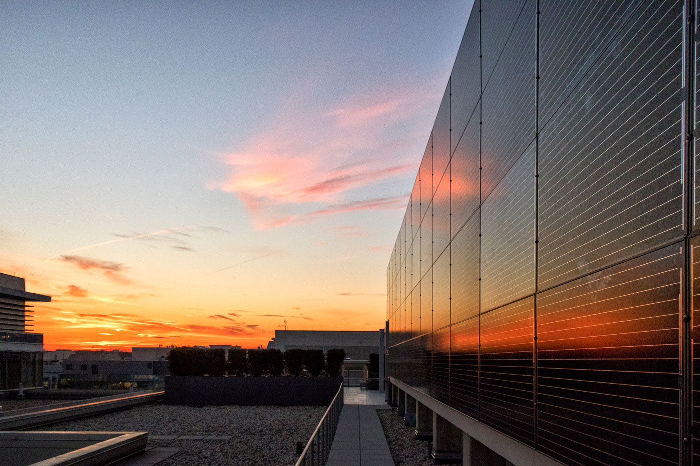 An outdoor sunset view of an upright vertical wall of solar panels on the right. There are streaks of clouds in the sky and the view overlooks buildings to the left.